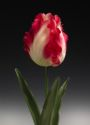 Fake flower Tulip #2